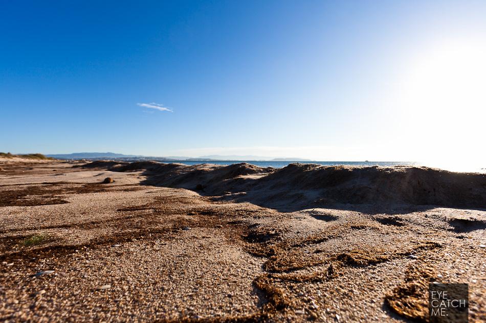Fotograf aus Köln macht Bilder der Seegraskugeln auf Sardinien